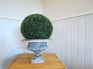 Small Urn and Boxwood Ball