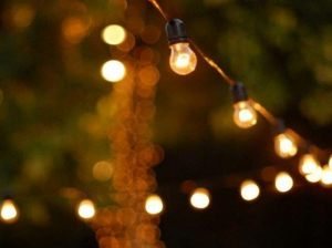 Vintage Festoon Lights