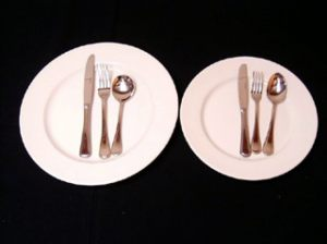 Dudson Dinner and Entree Plate